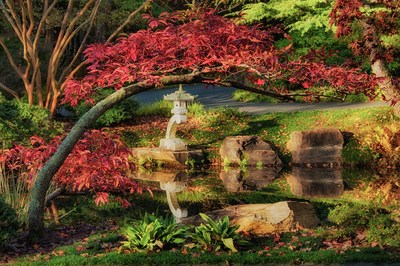Lantern: A curving branch covered with deep red foliage provides the perfect frame for one of 40 hand-carved Japanese lanterns in the Japanese Gardens at Gibbs Gardens.
