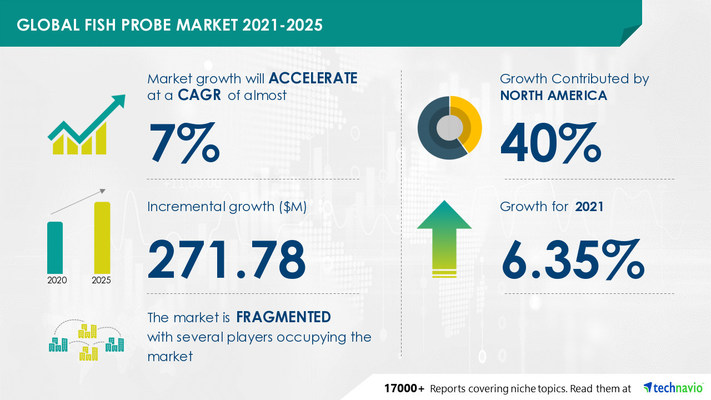 Attractive Opportunities in FISH Probe Market by End-user and Geography - Forecast and Analysis 2021-2025
